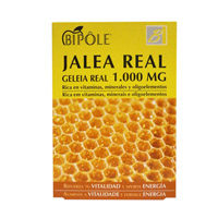 JALEA REAL ADULTOS 20 AMP. INTERSA